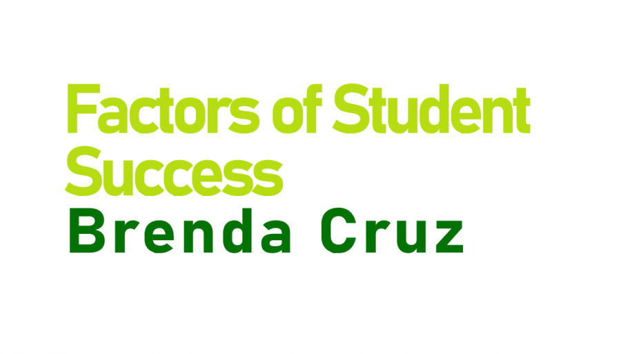 Factors of Student Success