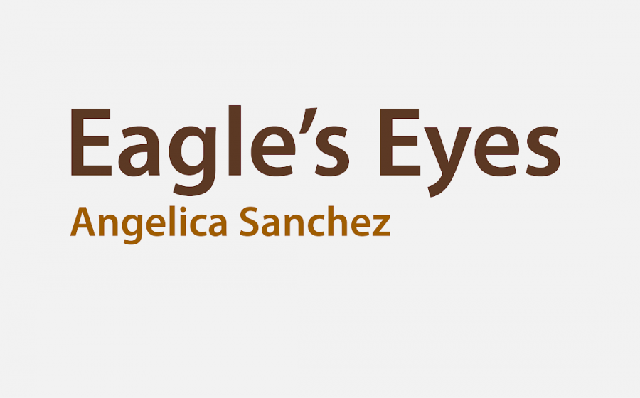 Eagle's Eyes